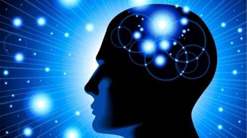вебинар психология конкуренции: борьба вместо жизни